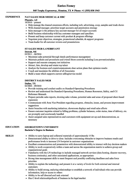 sales mgr resume samples