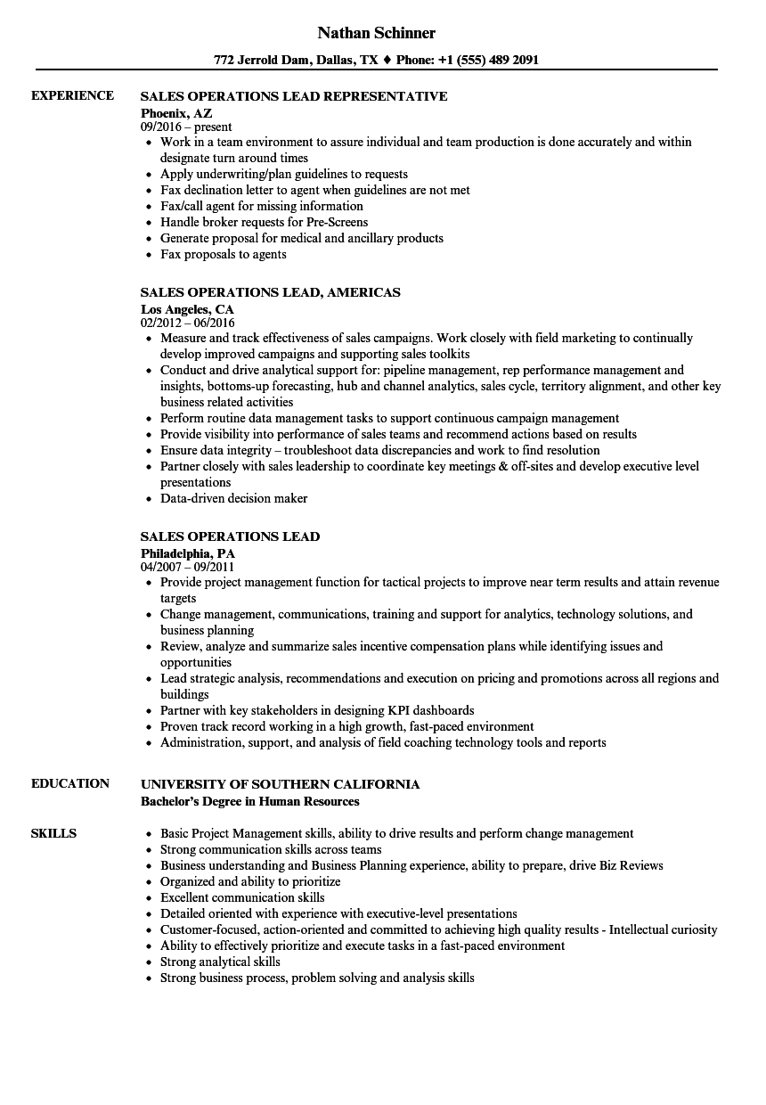 sales operations lead resume samples
