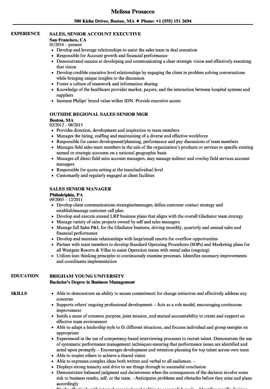 sales  senior resume samples