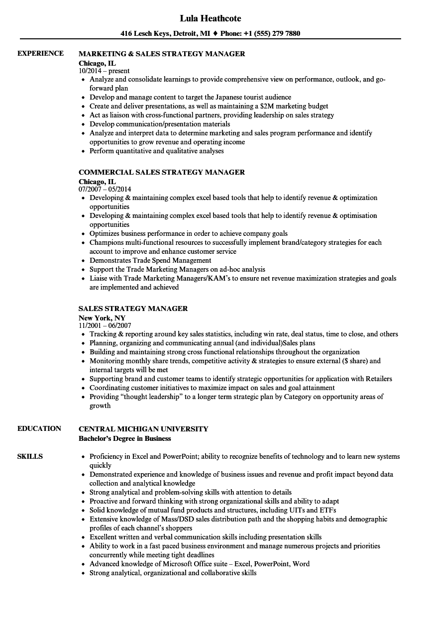 sales strategy manager resume samples