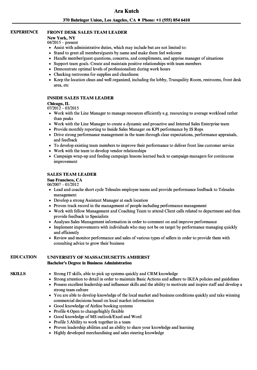 Sales Team Leader Resume Samples Velvet Jobs