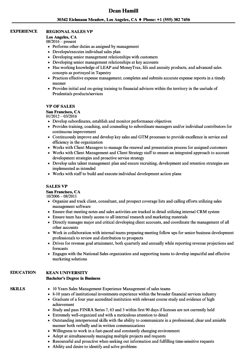 Velvet Jobs  Vp Sales Resume