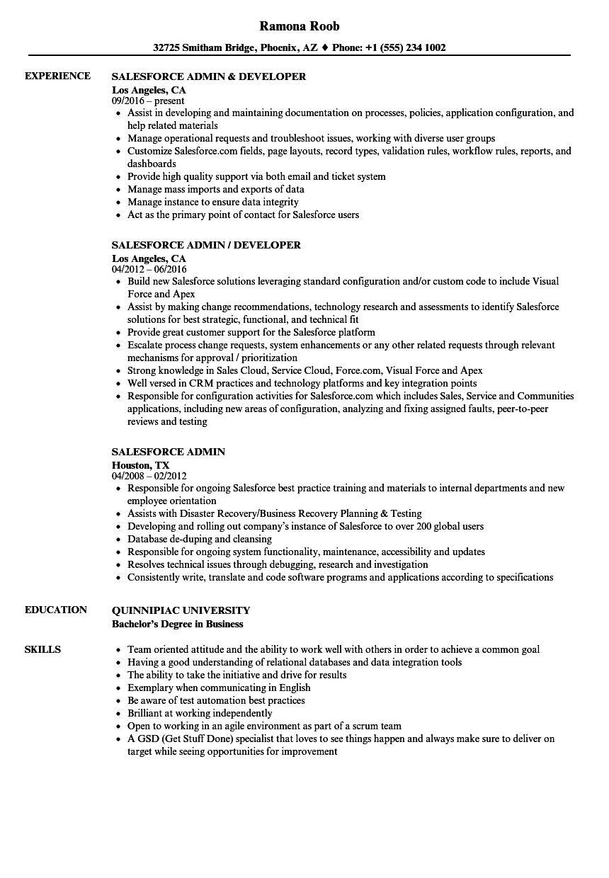 Salesforce Admin Resume Samples | Velvet Jobs