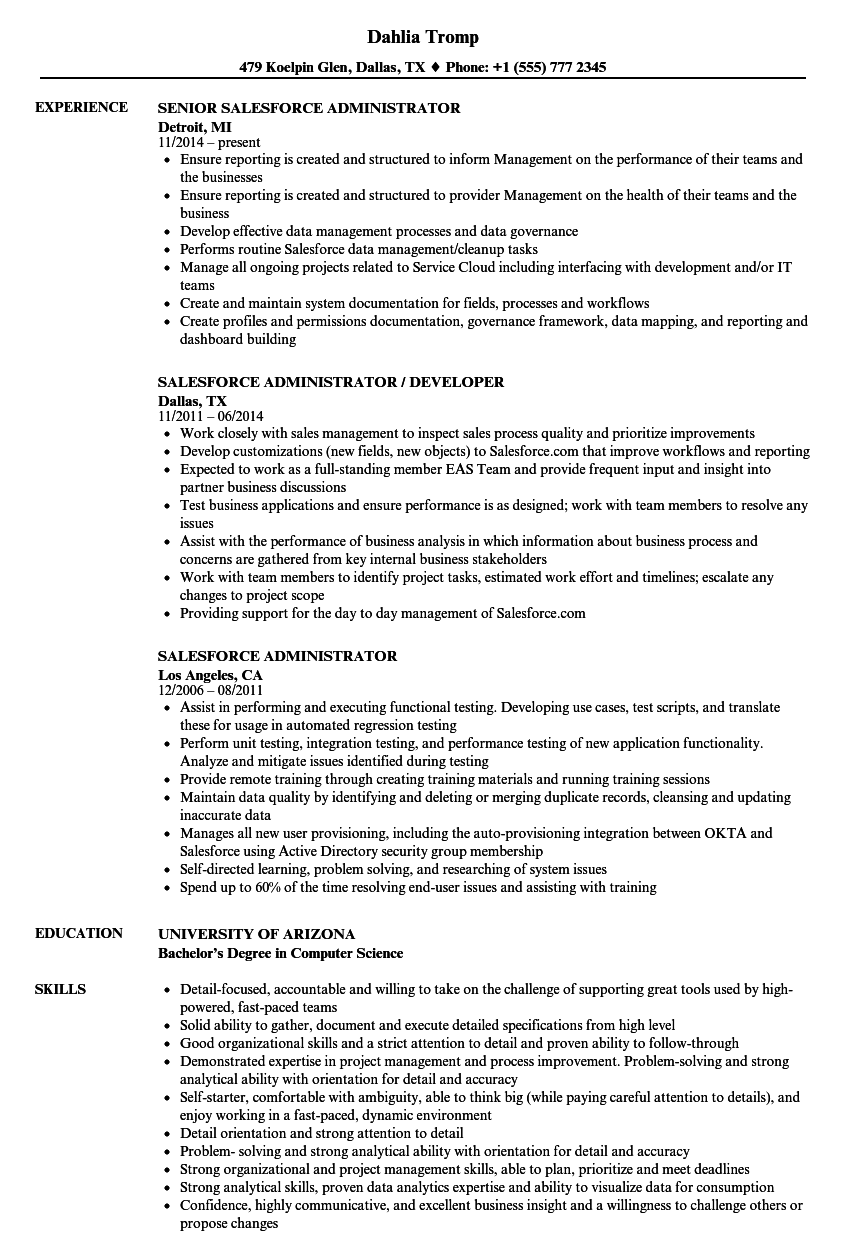 Salesforce Administrator Resume Samples | Velvet Jobs