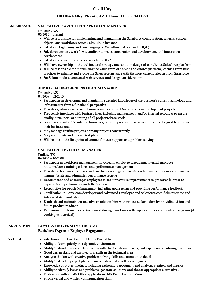 Salesforce Project Manager Resume Samples | Velvet Jobs