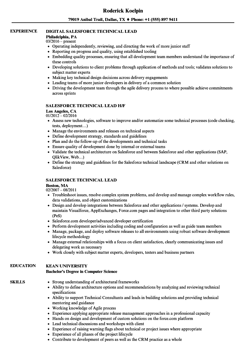 Salesforce Technical Lead Resume Samples | Velvet Jobs