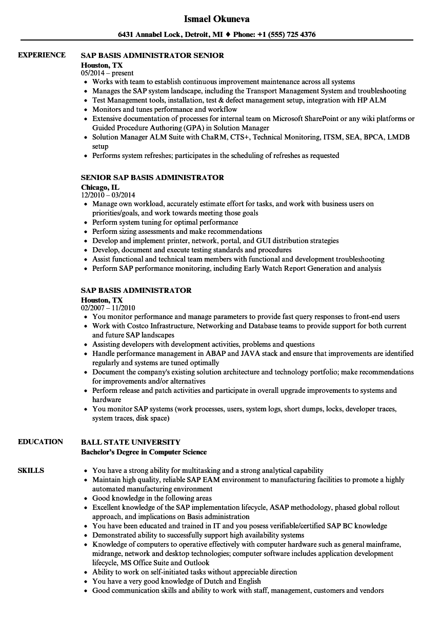 SAP Basis Administrator Resume Samples | Velvet Jobs