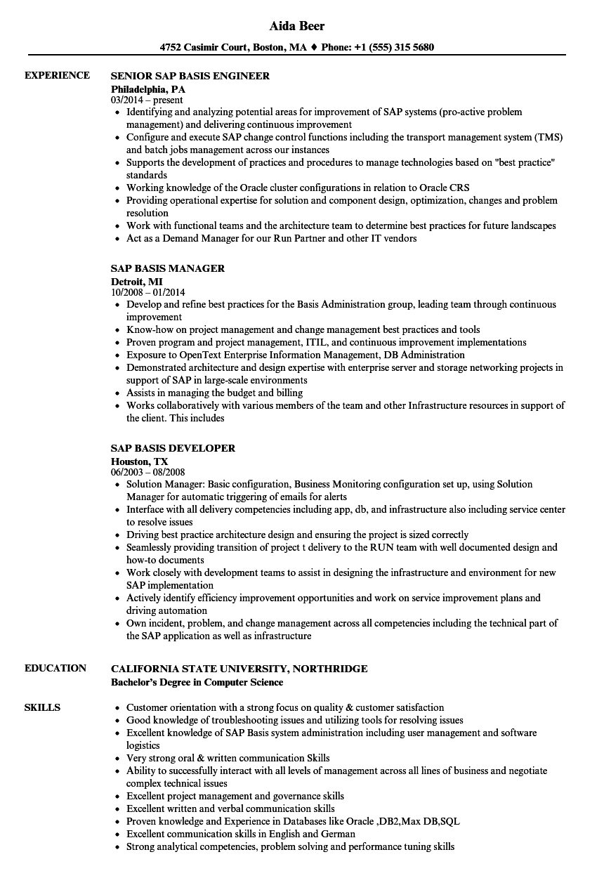 SAP Basis Resume Samples | Velvet Jobs