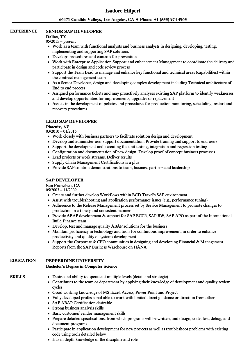 sap developer resume samples