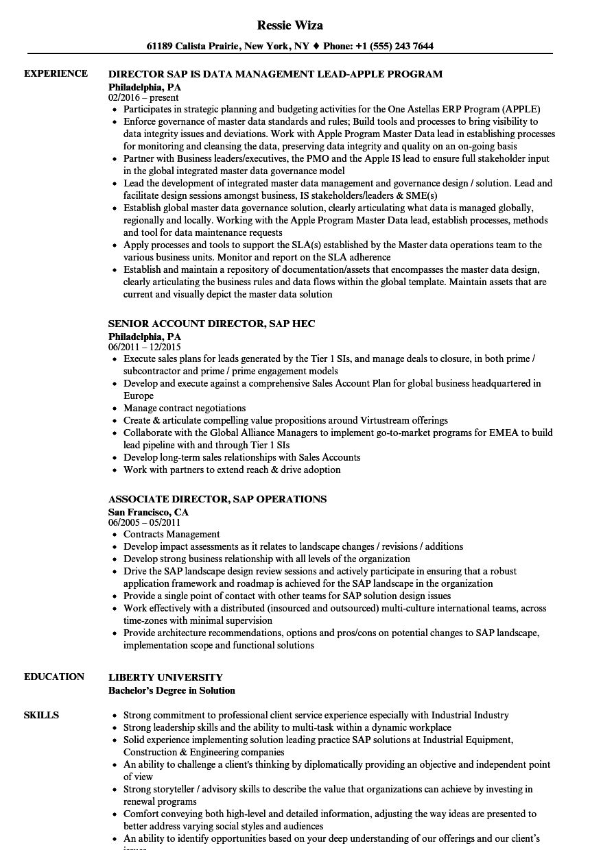 sap director resume samples