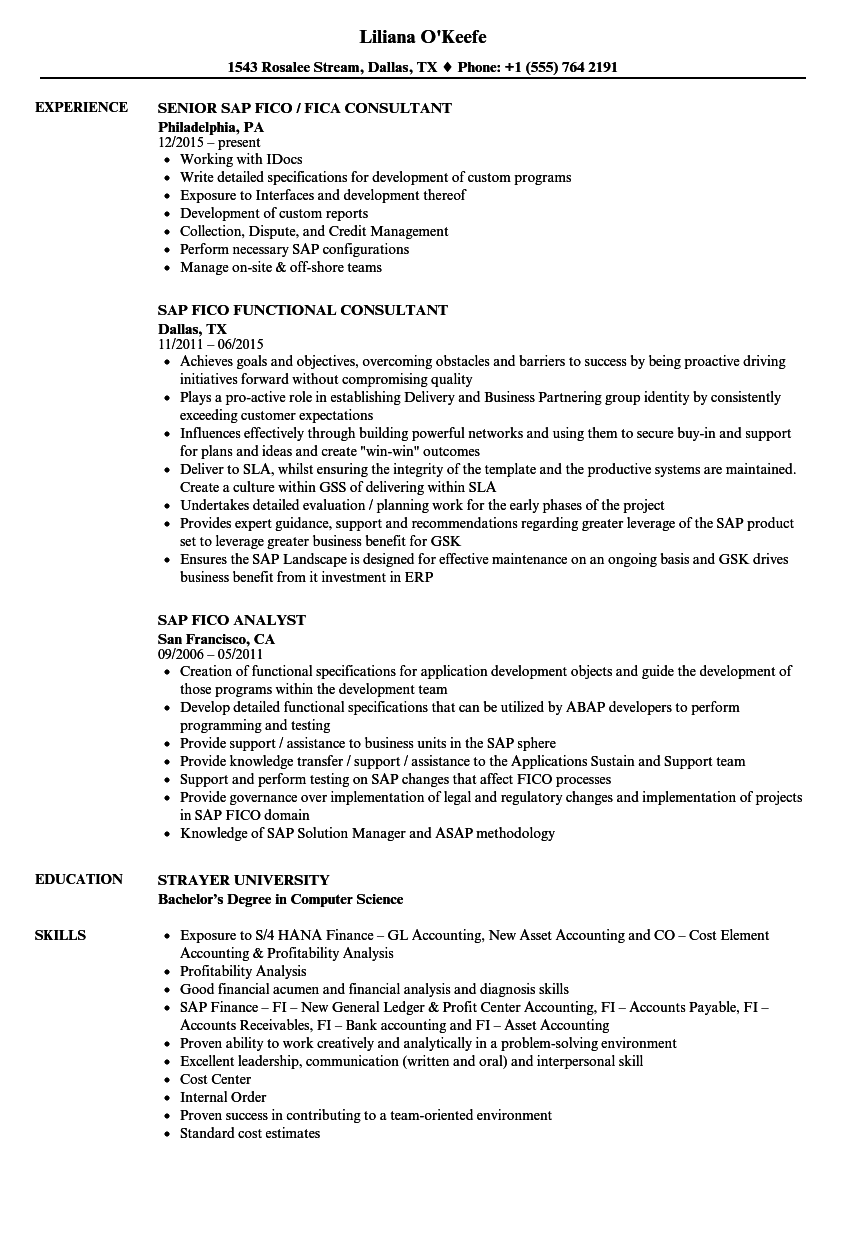 sample resume for sap fico consultant - sap fico resume samples velvet jobs