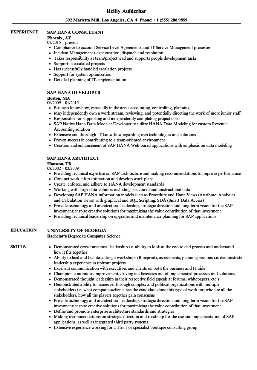 Sap Hana Resume Samples | Velvet Jobs