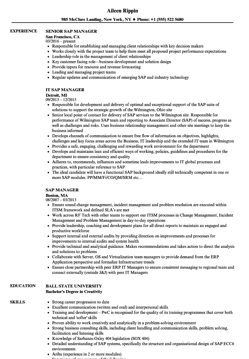 SAP Manager Resume Samples | Velvet Jobs