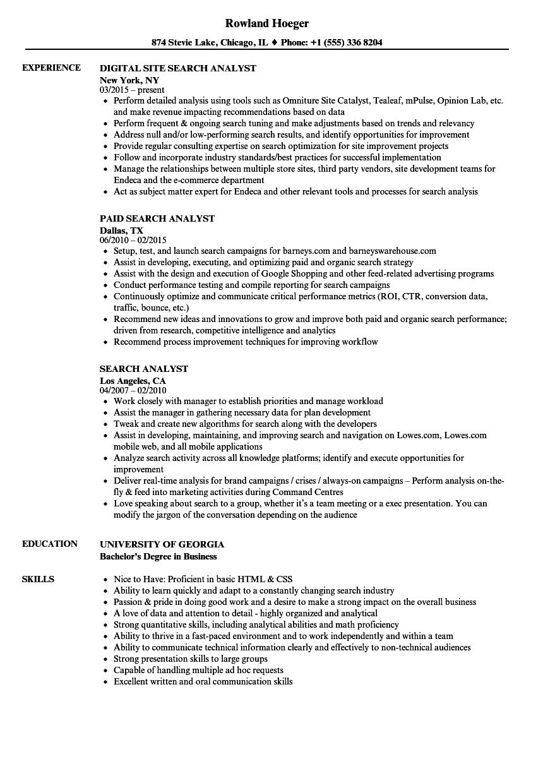 Search Analyst Resume Samples   Velvet Jobs