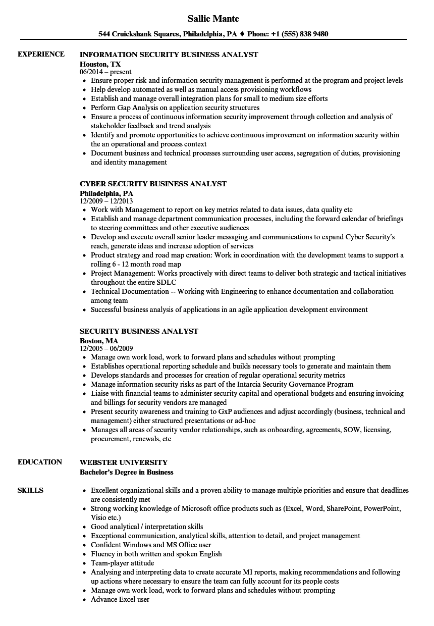 Security Business Analyst Resume Samples | Velvet Jobs