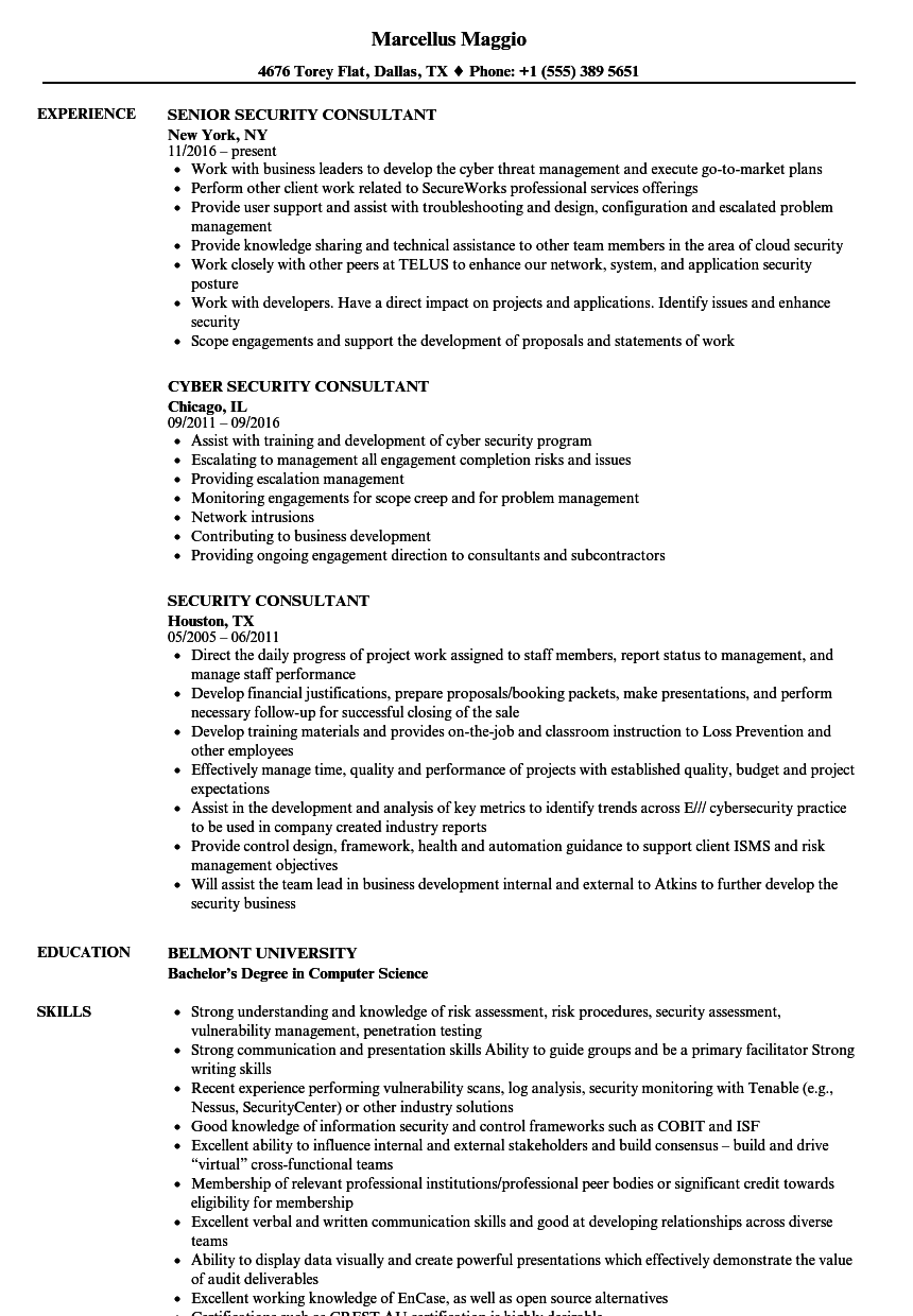 security consultant resume samples