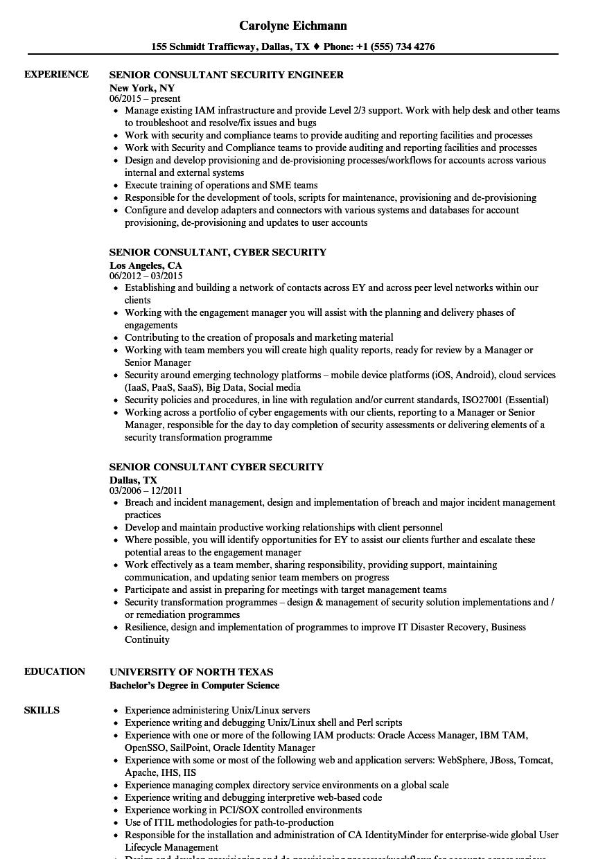 Security Consultant Senior Resume Samples | Velvet Jobs