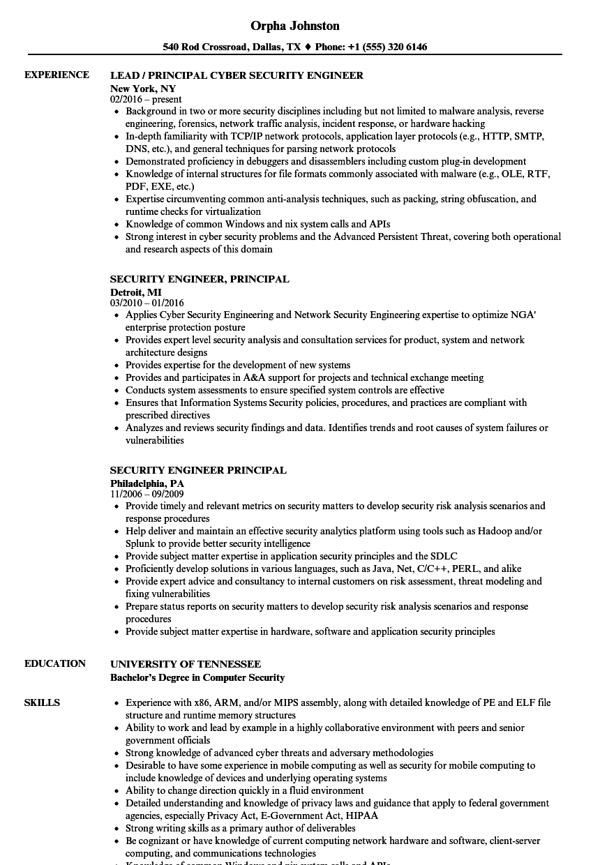 Download Security Engineer Principal Resume Sample As Image File