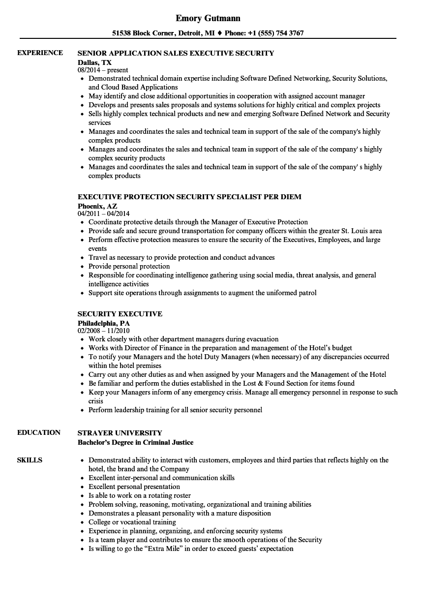Security Executive Resume Samples | Velvet Jobs