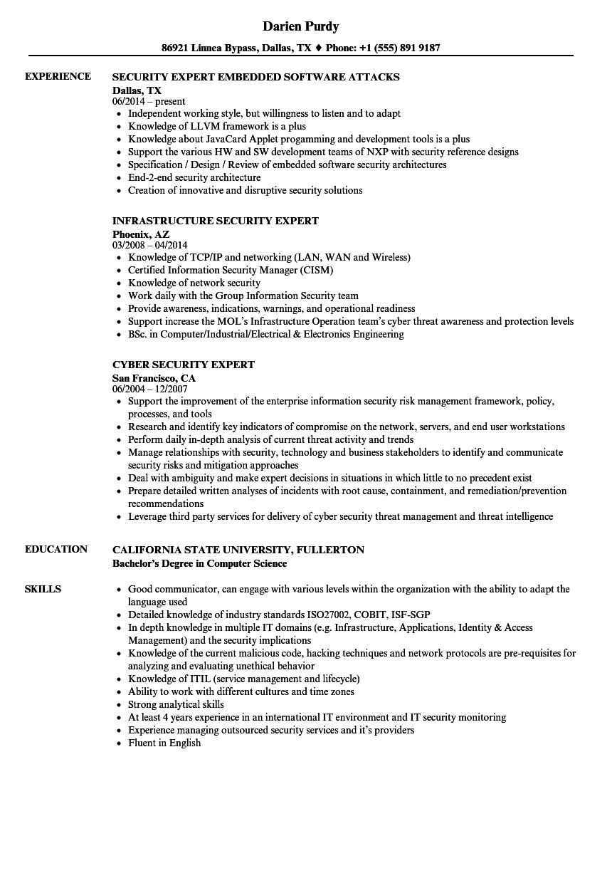 Security Expert Resume Samples | Velvet Jobs