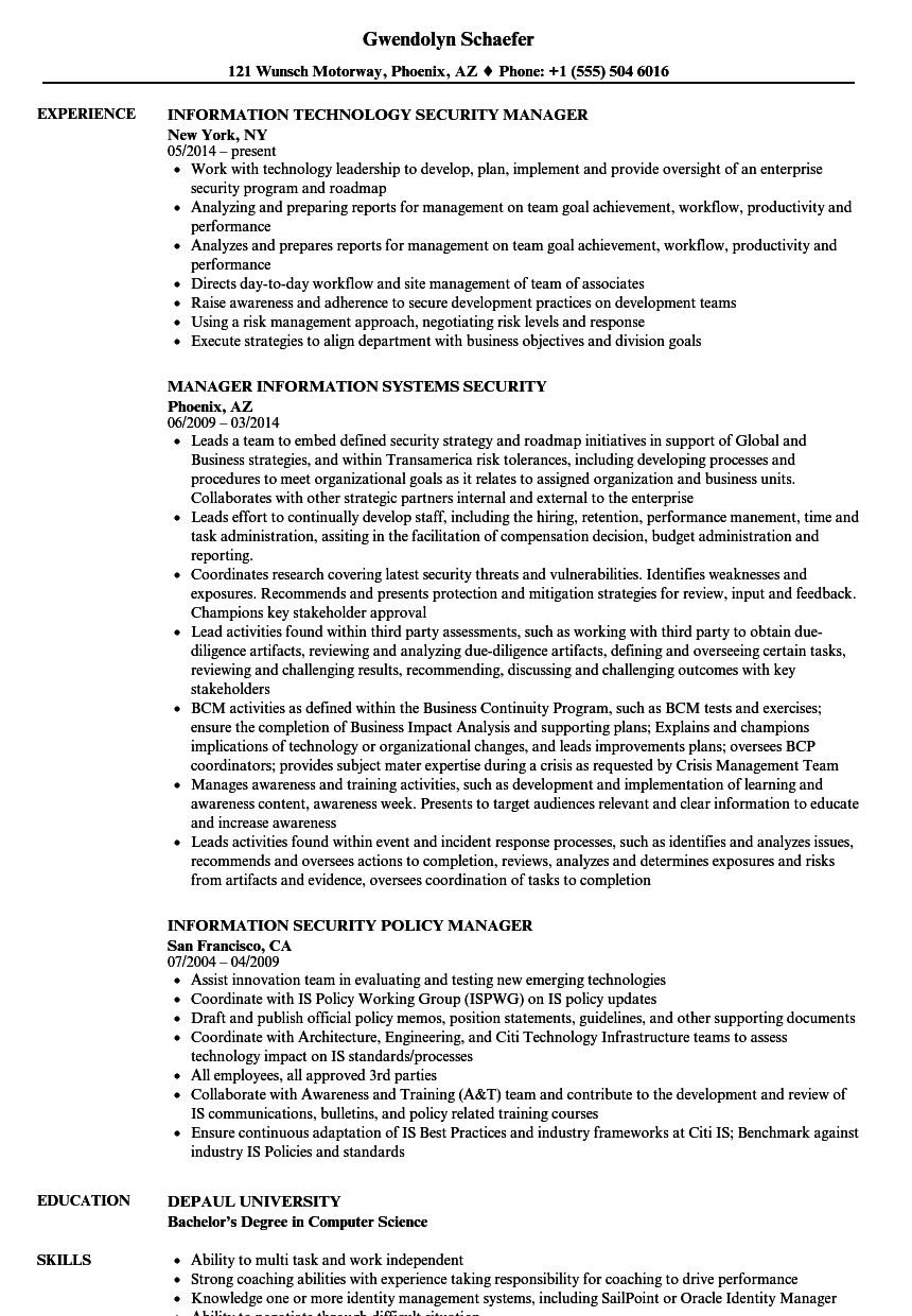 security information manager resume samples