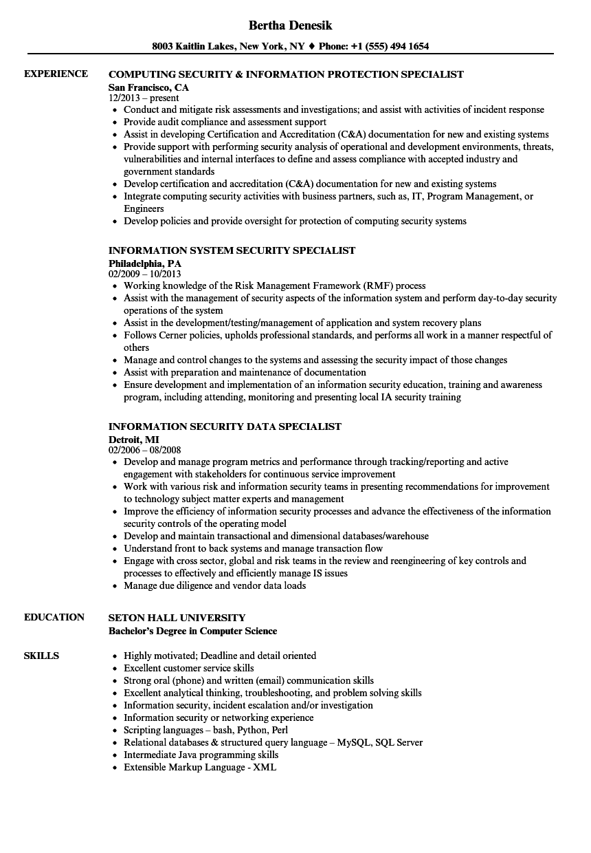security information specialist resume samples velvet jobs