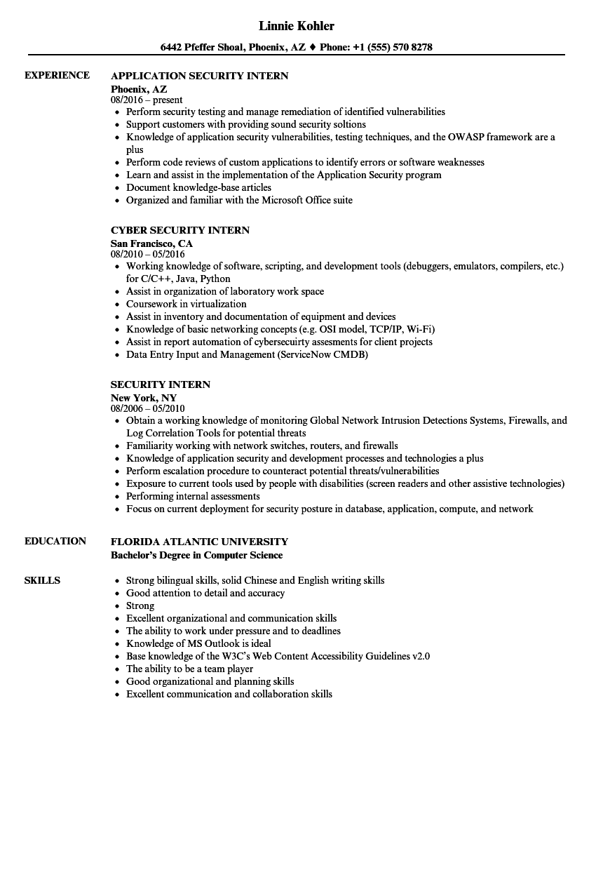 Download Security Intern Resume Sample As Image File  Resume Model