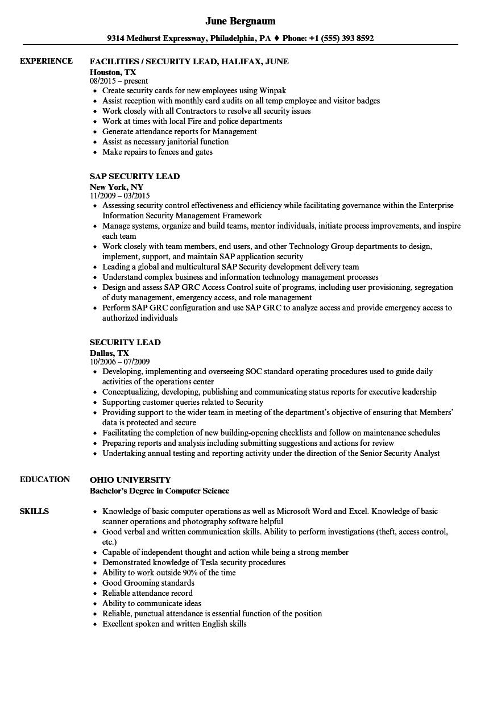 security lead resume samples