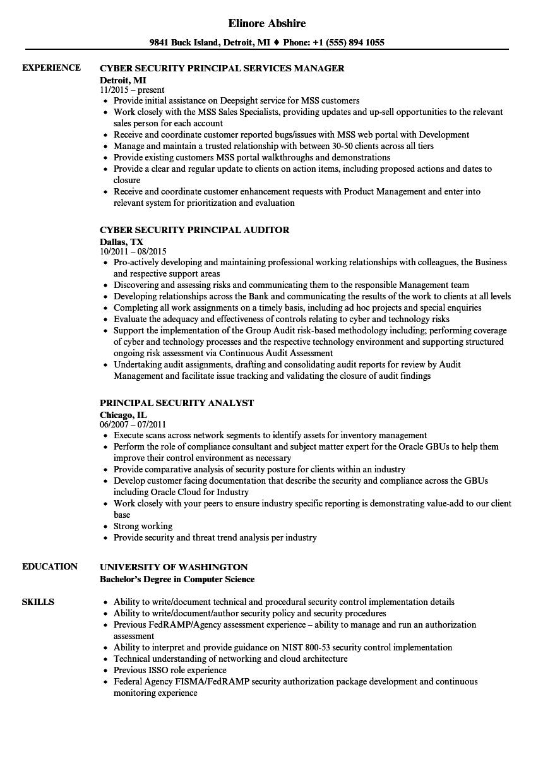 security principal resume samples