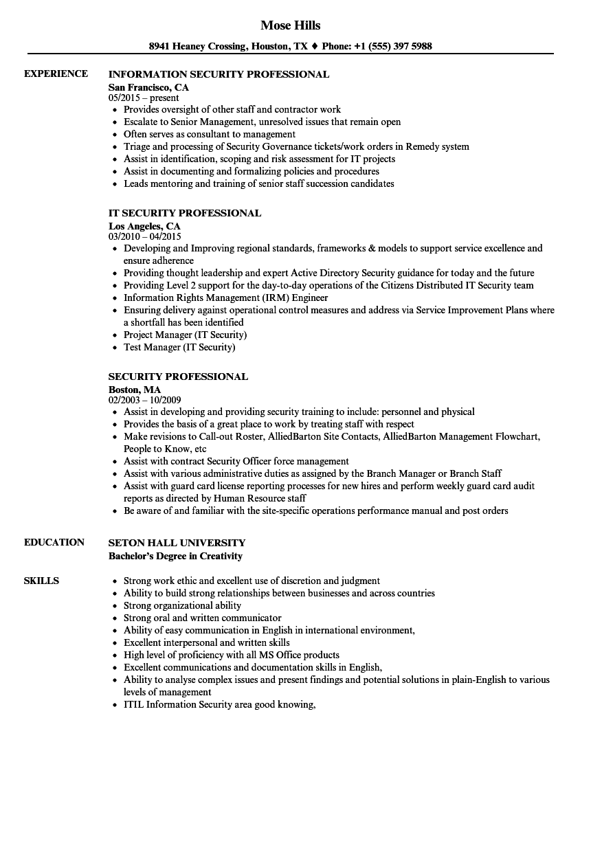 Download Security Professional Resume Sample As Image File