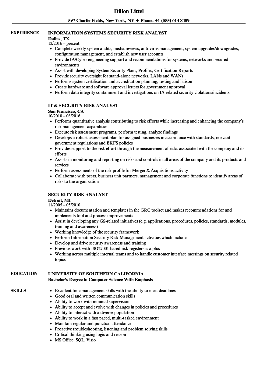 security risk analyst resume samples