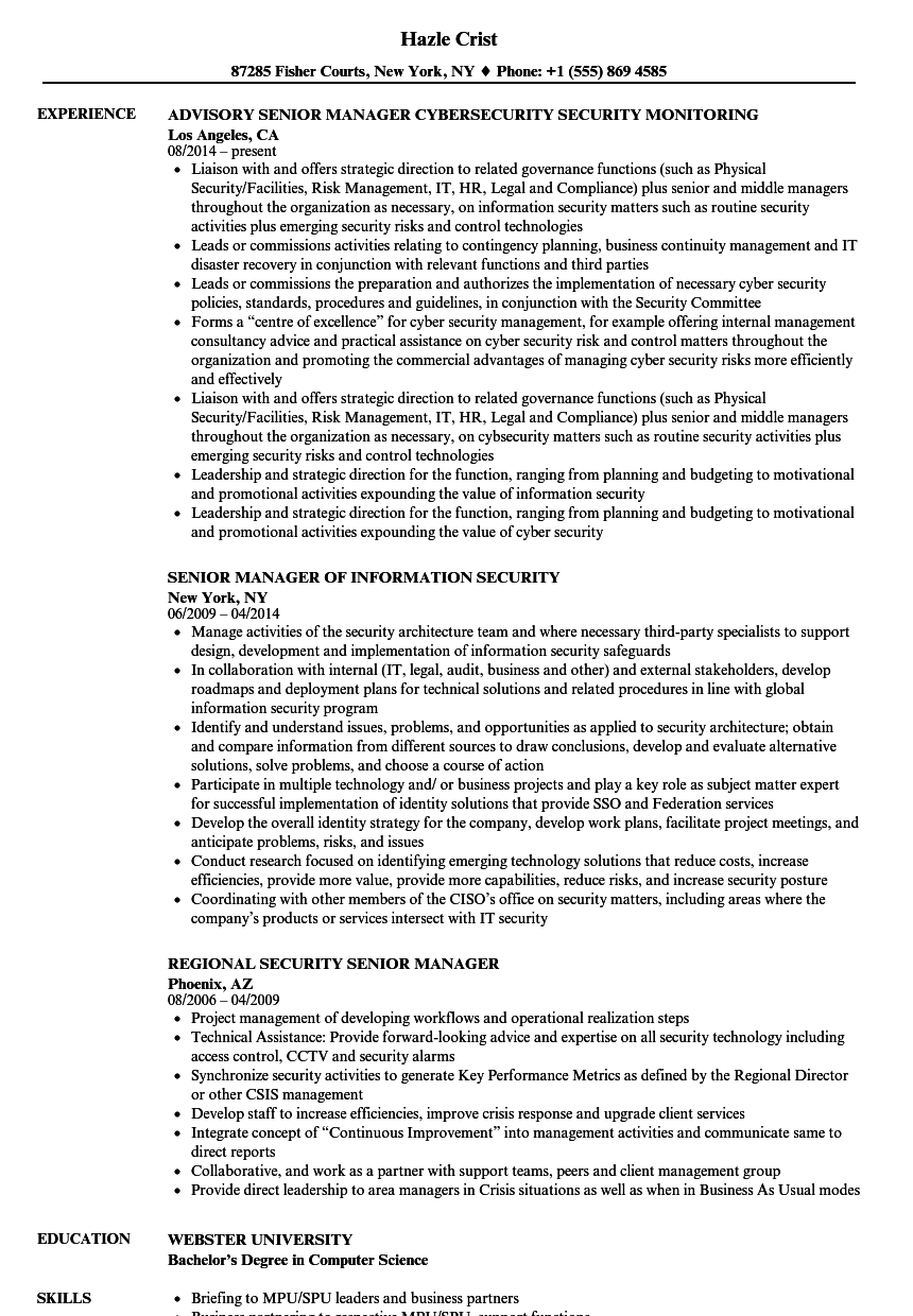 security senior manager resume samples