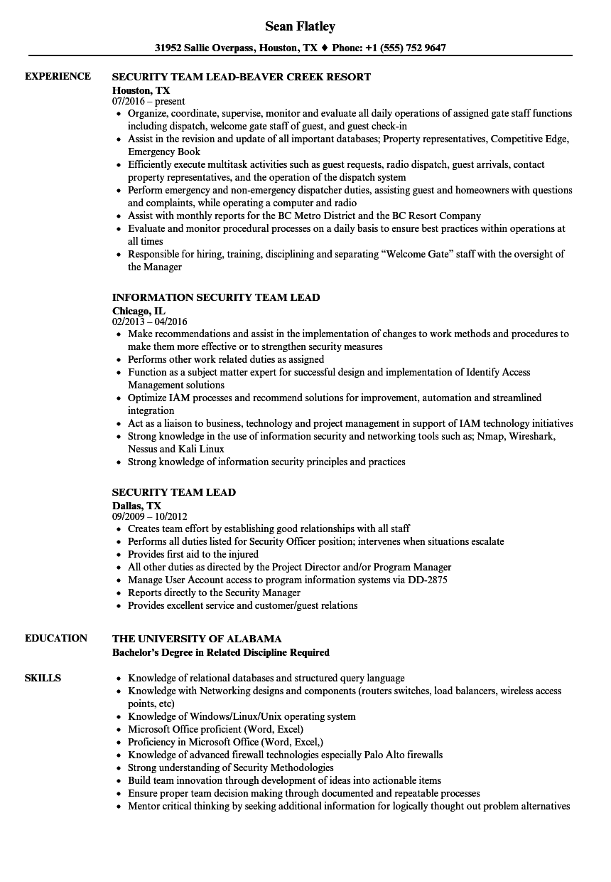 sample resume for team lead position