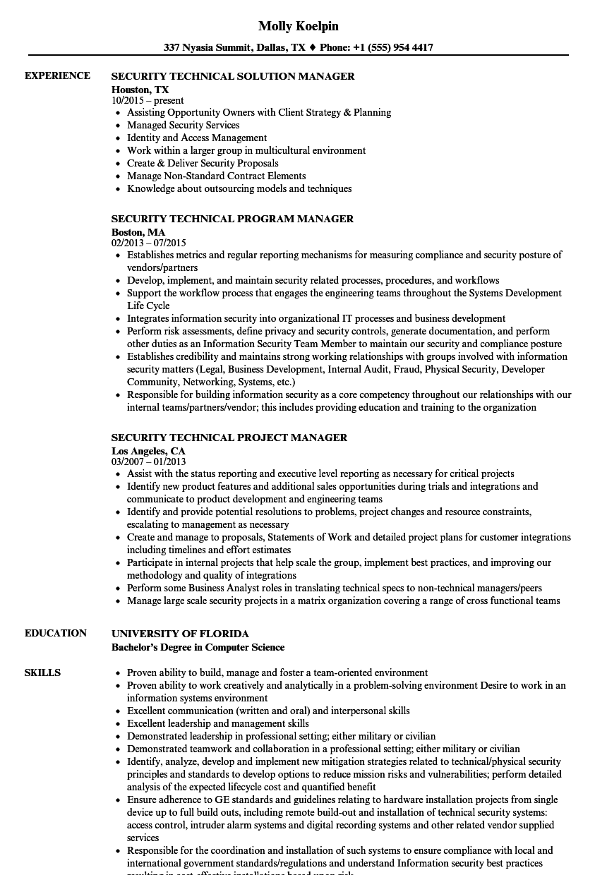 security technical manager resume samples
