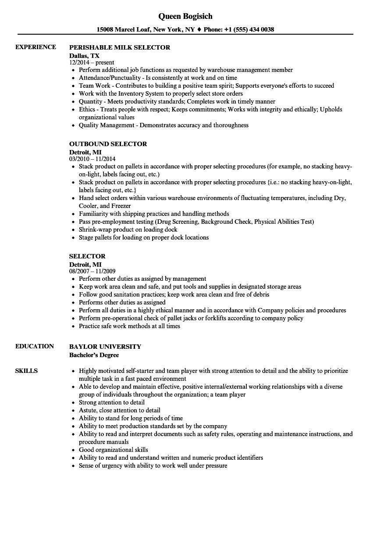selector resume samples
