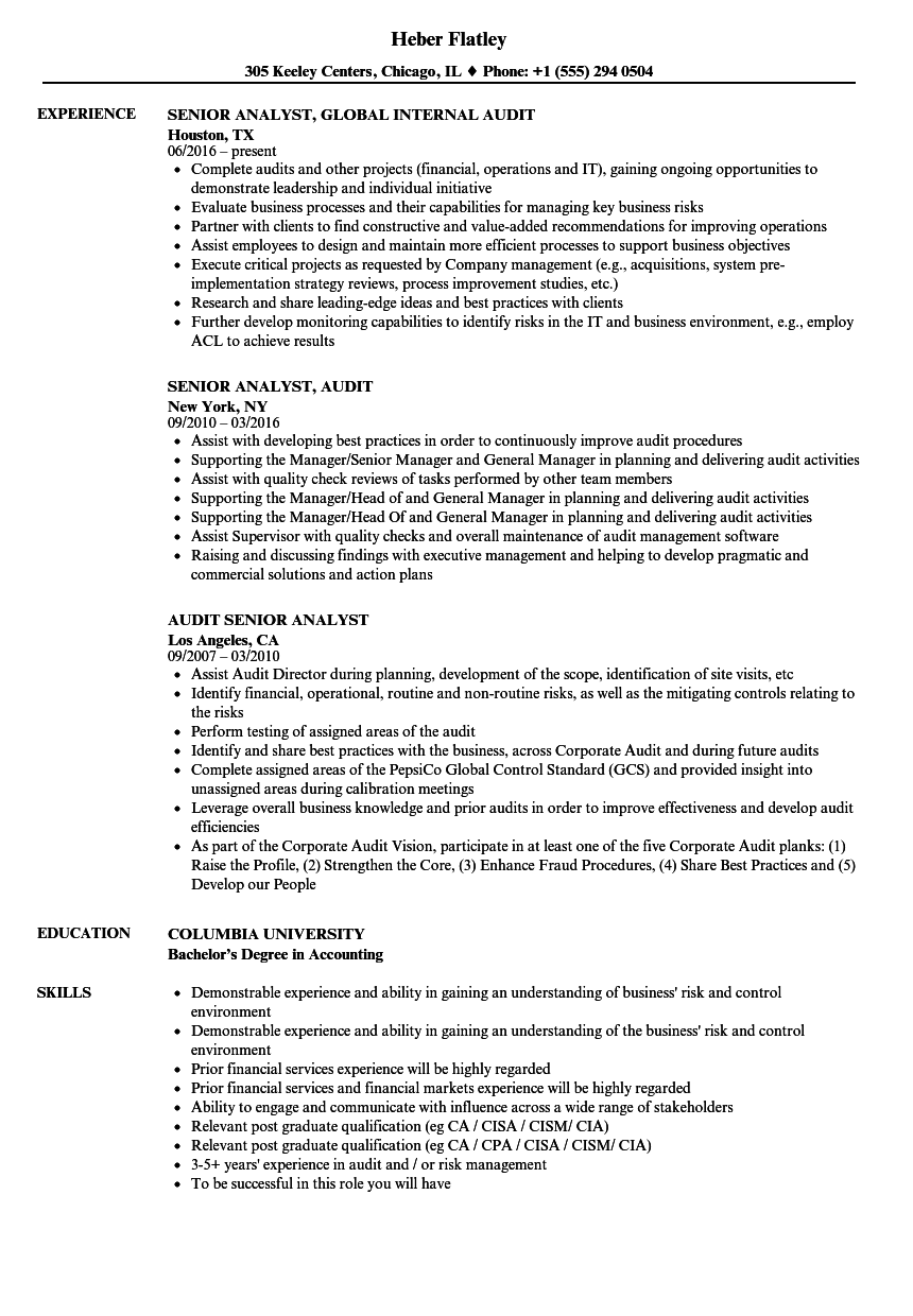 senior analyst audit resume samples velvet jobs