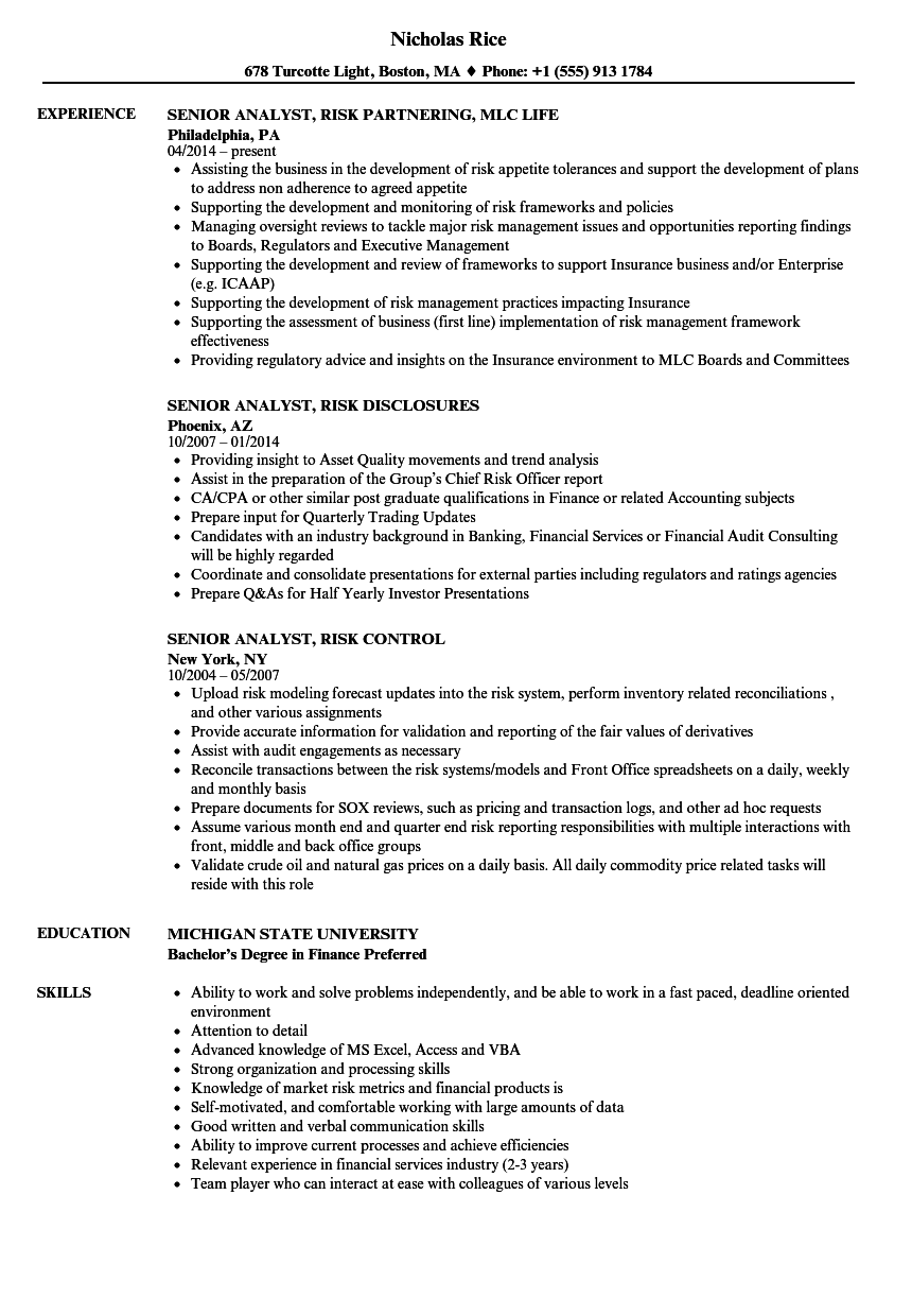 senior analyst risk resume samples