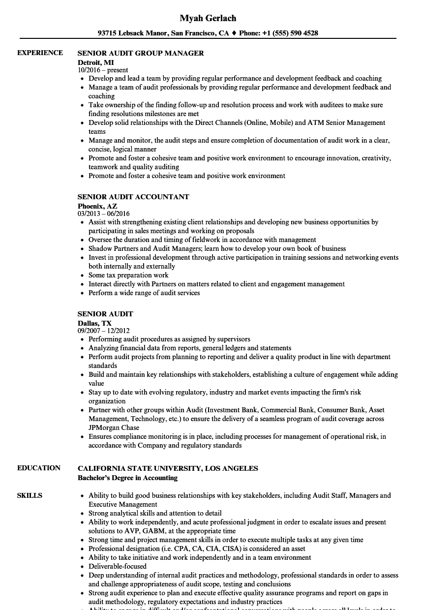 Senior Audit Resume Samples | Velvet Jobs