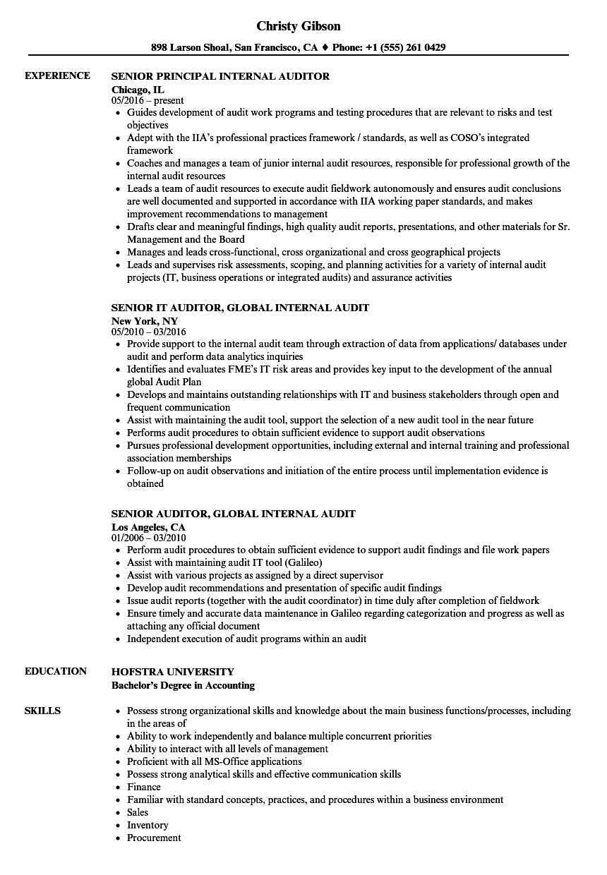Senior Auditor, Internal Resume Samples | Velvet Jobs