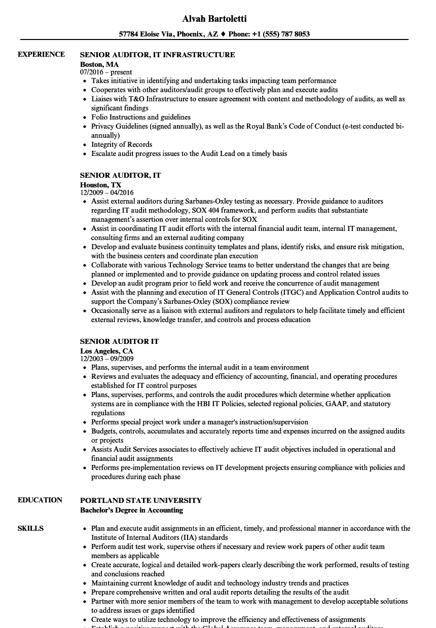 Senior Auditor, IT Resume Samples | Velvet Jobs