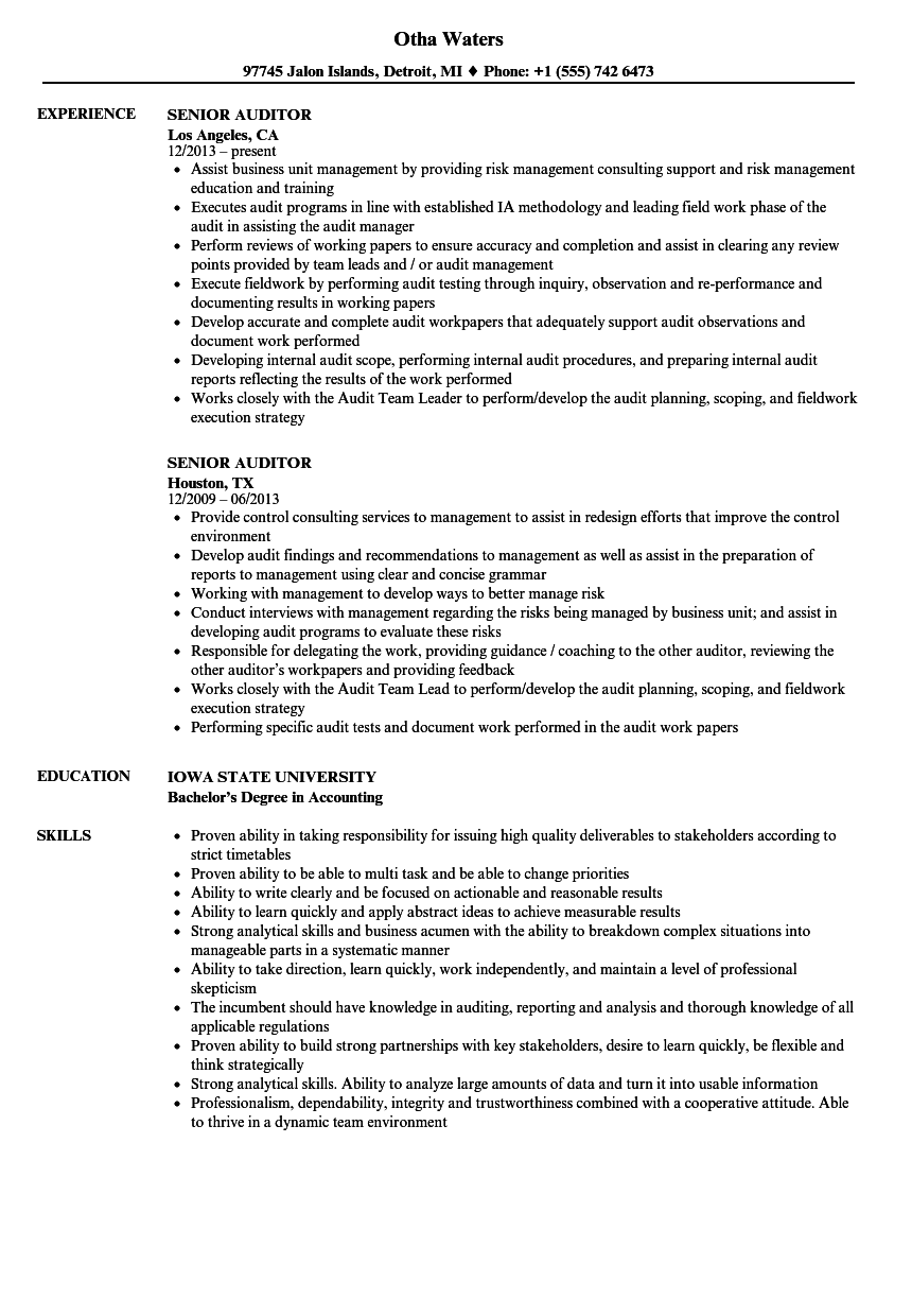 senior auditor resume samples velvet jobs