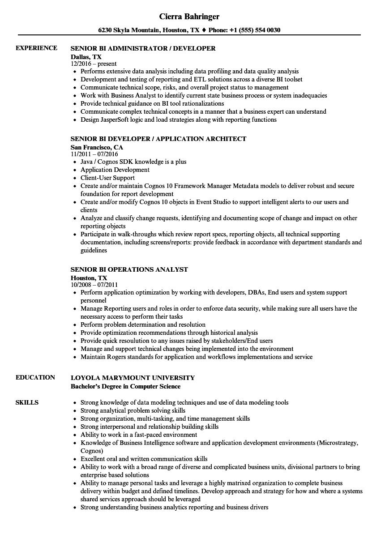 senior bi resume samples