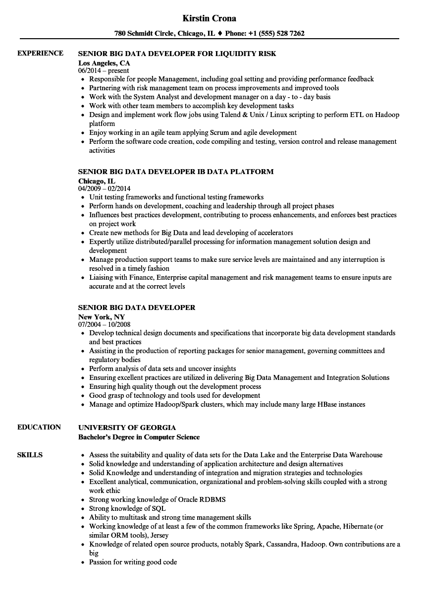 senior big data developer resume samples