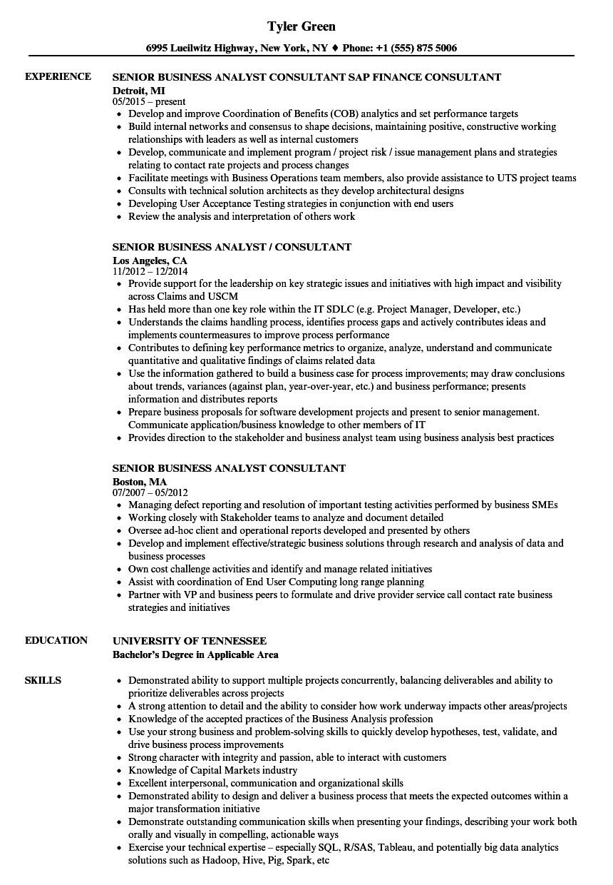 senior business analyst consultant resume samples