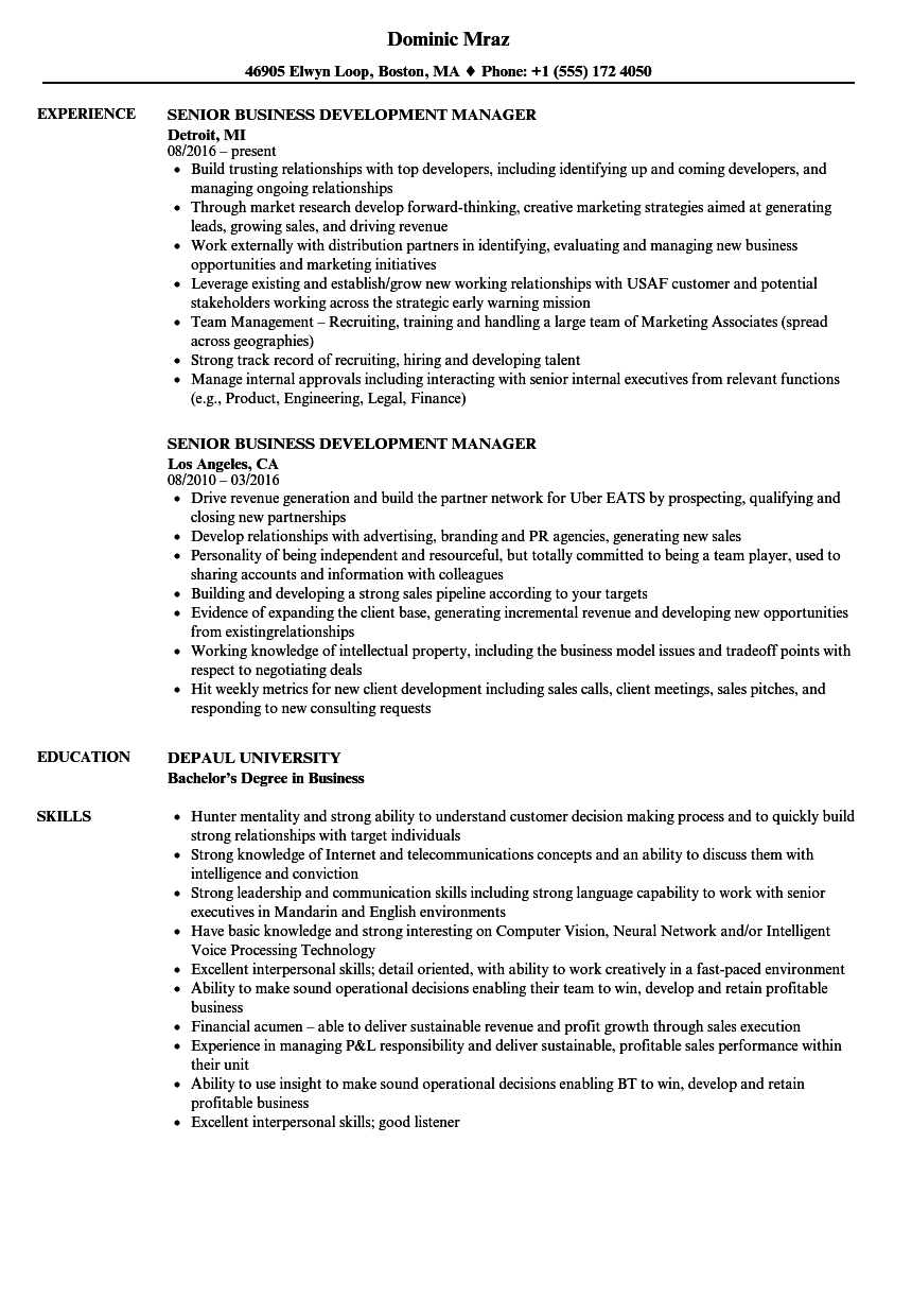 Senior Business Development Manager Resume Samples | Velvet Jobs
