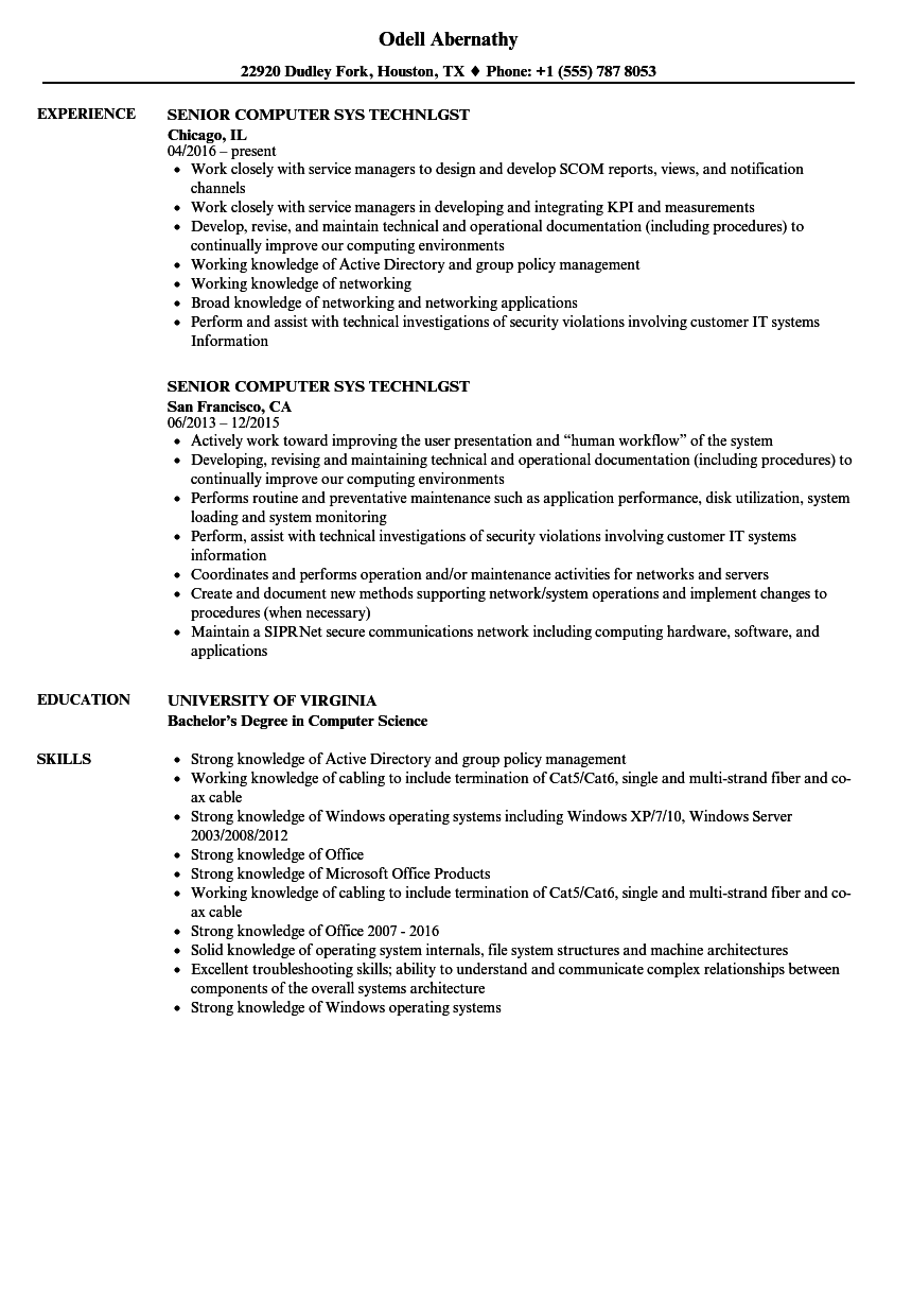 senior computer sys technlgst resume samples