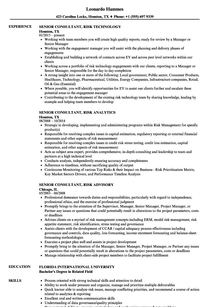senior consultant  risk resume samples