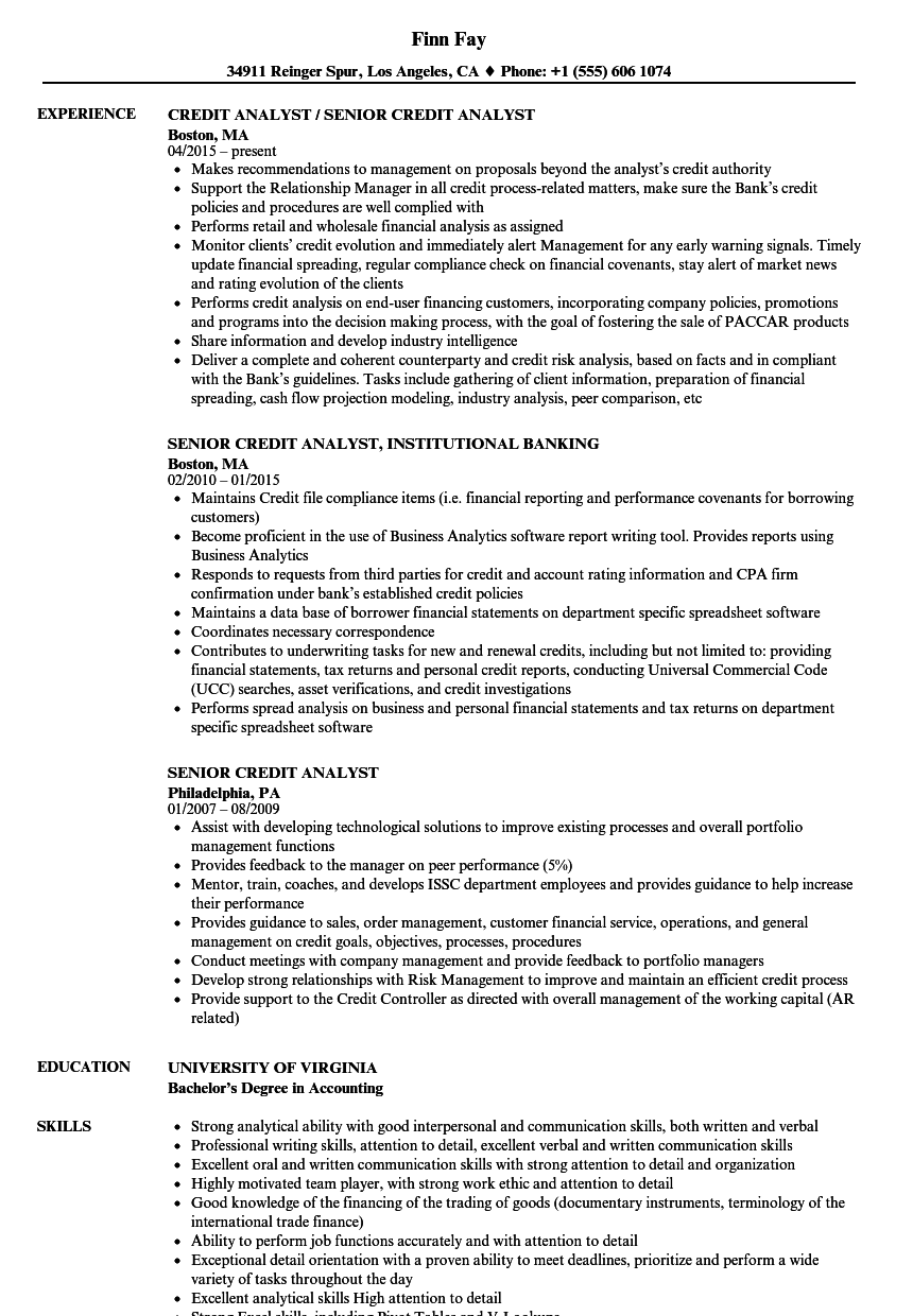 senior credit analyst resume samples