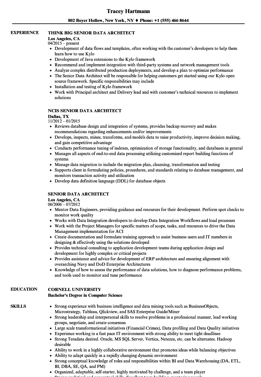 Senior Data Architect Resume Samples | Velvet Jobs
