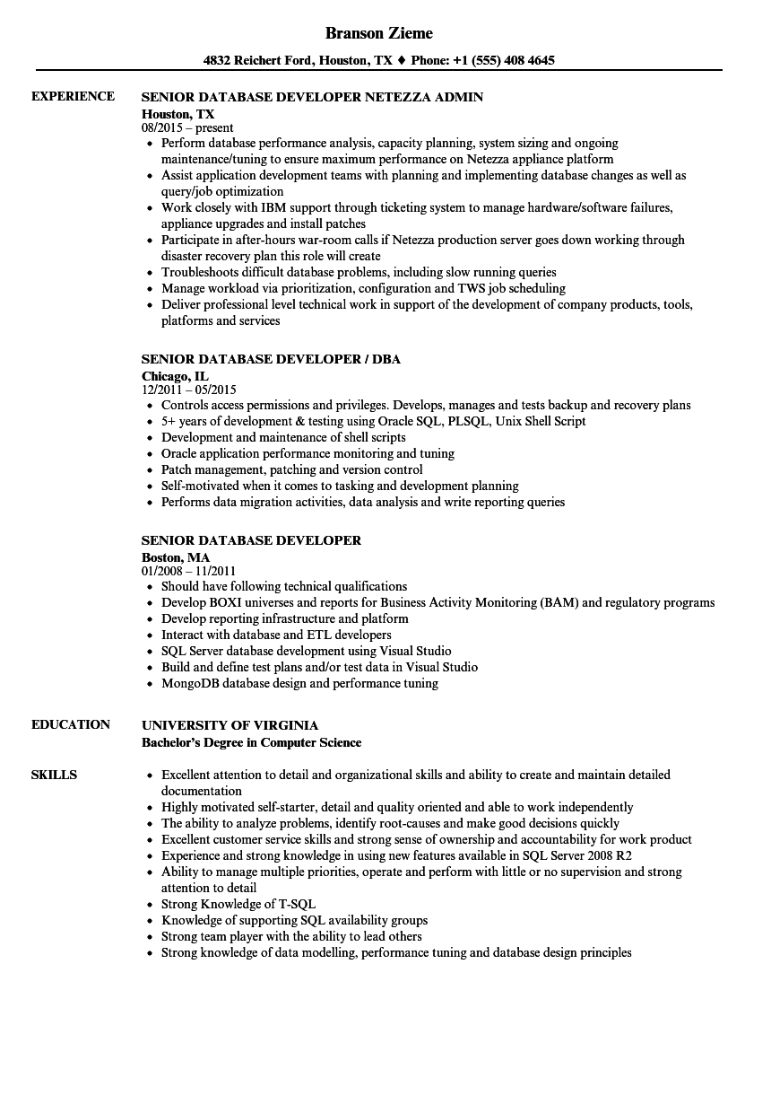 Senior Database Developer Resume Samples | Velvet Jobs